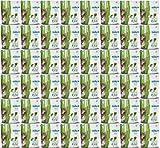 Bell Rock Organic Pet Greens Self Grow Kit Medley Blend 88g 48pk