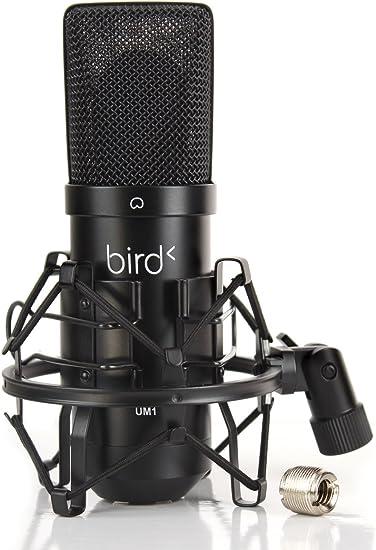 """Résultat de recherche d'images pour """"bird um1"""""""