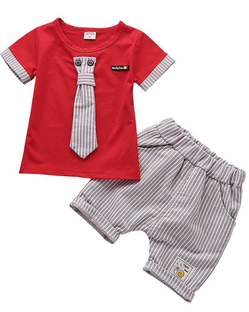Baby Boys Toddler Kids 2 Pieces Winter Fall Summer Clothing Set T-Shirt Pants Outfits