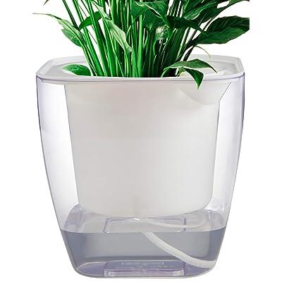 """Flower pots indoor or Outdoor, Self Watering Planter 7"""", Self Watering Pot (L) : Garden & Outdoor"""