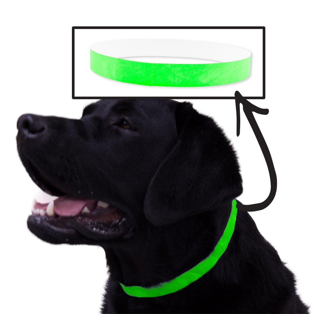 Safe-T Collar 500 Ct. ID Veterinary Bands For Animals - Neon Green