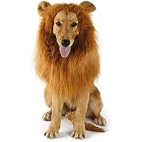 HONZIRY Traje de Animal doméstico León Pelucas Melena