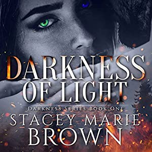 Darkness of Light Audiobook