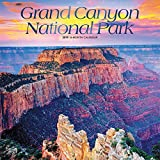 Grand Canyon National Park 2019 12 x 12 Inch Monthly Square Wall Calendar, USA United States of America Scenic Nature (English, Spanish and French Edition)