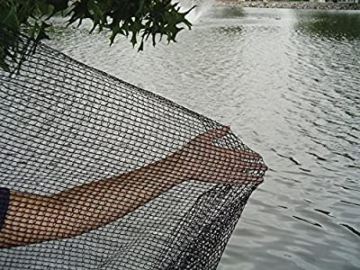 DeWitt Pond Netting, 10 by 12-Feet(2Pack) Size: 2Pack, Model: , Home & Outdoor Store