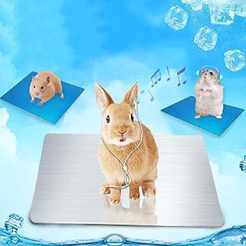 CHY Accesorios para mascotas Verano Pequeña mascota Hámster Conejo ...