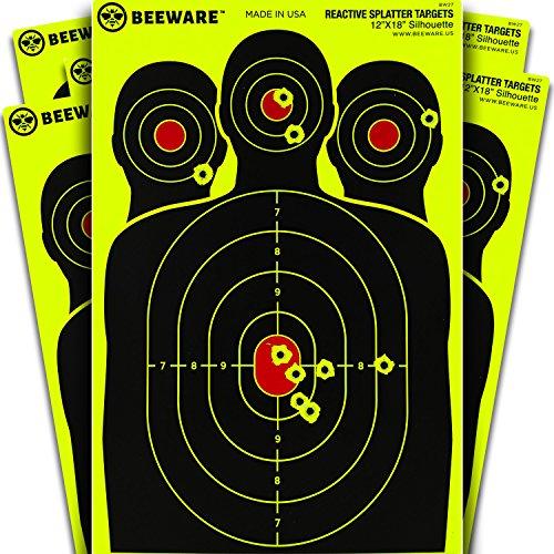12 x 18 target - 1