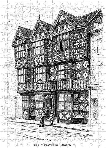 Media Storehouse 252 Piece Puzzle of The Feathers Hotel , Ludlow (Victorian Engraving) (18758601)