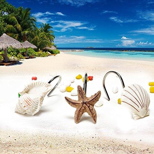 AGPtek® 12 PCS Fashion Decorative Home Bathroom Seashell Shower Curtain Hooks (Seashell: Light Brown; Starfish: Tan; Conch: Light Brown)
