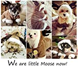 Onmygogo Moose Costumes for Dog and Cats, Pet Clothes Dress for Halloween and Christmas (XL)