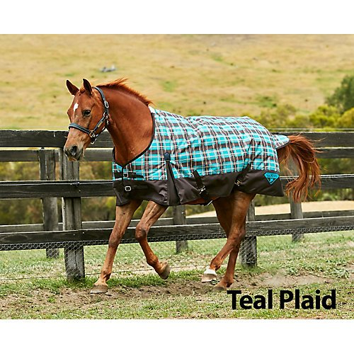 Saxon 1200D Ripstop Standard Neck Medium Turnout Blanket with Gussets, Teal/Plaid, Size 69 (Neck Medium Turnout Blanket)