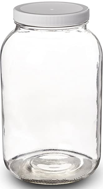 amazoncom paksh novelty 1gallon glass jar wide mouth with airtight plastic lid usda approved bpafree dishwasher safe mason jar for fermenting - Glass Containers With Lids