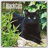ブラウントラウト 2016年 カレンダー 壁掛け 黒猫 16-ZB-504031