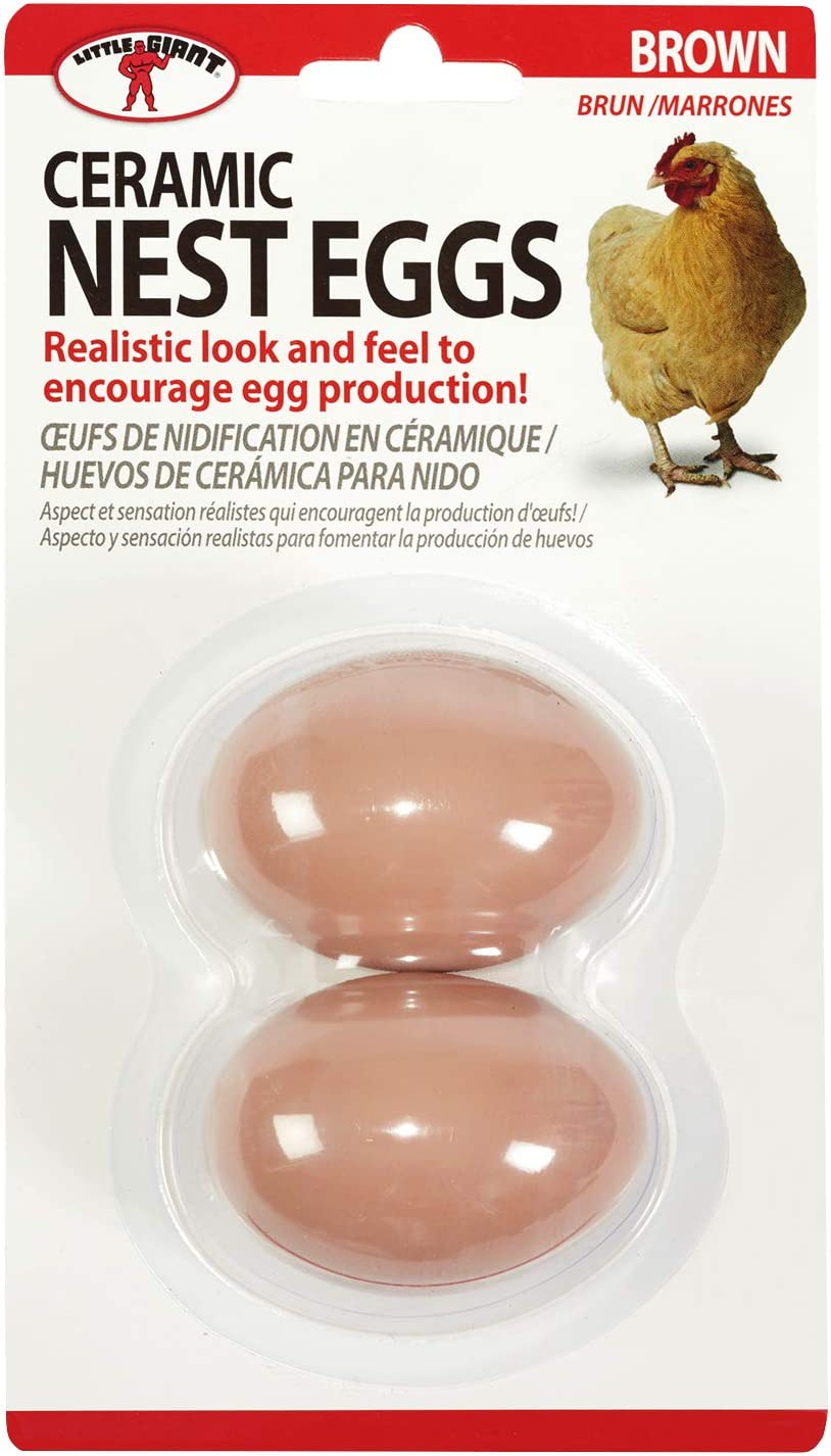 Little Giant Ceramic Nest Eggs (Brown) Artificial Eggs to Encourage Egg Production (Item No. CEGGBRN)