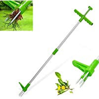GRGM Standing Plant Root Remover Tool Stainless Steel And High Strength Foot Pedal Weed Puller Stand Up Manual Weeder Hand Tool with 3 Claws