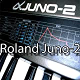 ROLAND JUNO-2 Huge Sound Library & Editors on CD