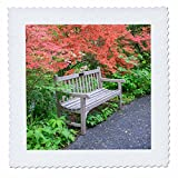 3dRose Danita Delimont - Gardens - Park bench in Azalea Woods, Winterthur, Delaware, Usa - 16x16 inch quilt square (qs_278842_6)