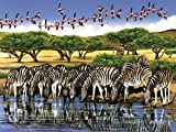 Cobble Hill Zebras and Flamingoes, 500-Piece