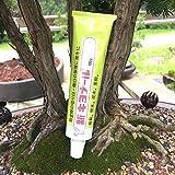 Kiyonal New Bonsai Pruning Cutting Paste 100g