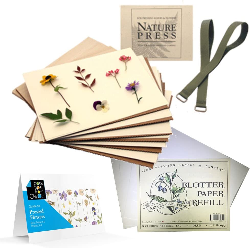 Amazon Com Nature S Pressed Flower Press For Adults Kids Blotter
