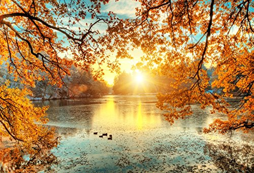 Leowefowa10x8ft Autumn Tree Branch Arch Sunshine Lake View Backdrop Cotton Polyester Photography Backgroud Outdoors Park Yellow Trees Fallen Leaves Water Surface Ducks Rural Scene Leisure Vacation]()