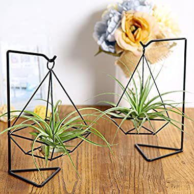 Mkono Airplant Creative Bracket Himmeli for Airplant Tillandsia (with stand)--Diamond