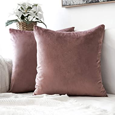MIULEE Pack of 2 Decorative Velvet Pillow Covers Soft Square Throw Pillow Covers Soild Cushion Covers Jam Pillow Cases for Sofa Bedroom Car 18 x 18 Inch 45 x 45 cm