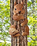 Squirrel Tree Hugger Review