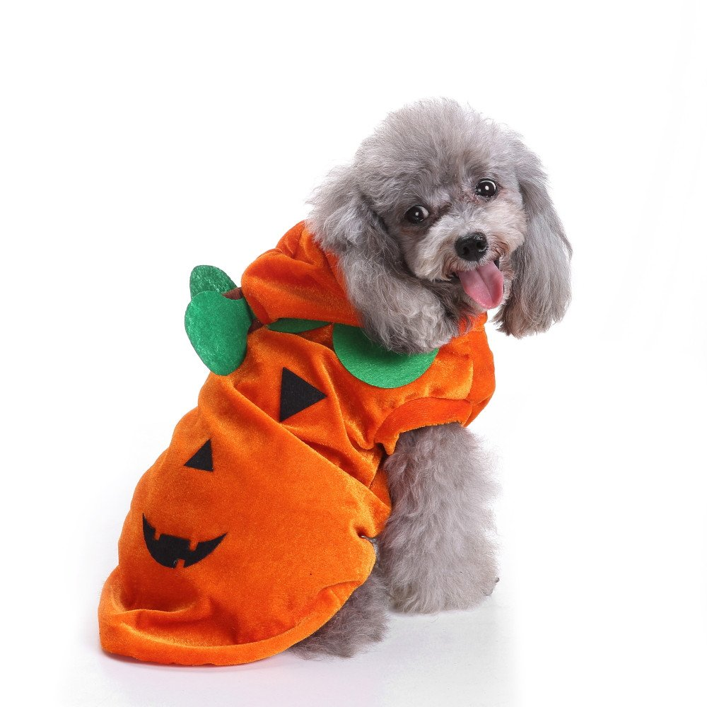Fossrn Perro Halloween Disfraz Calabaza Abrigo con Capucha Ropa ...