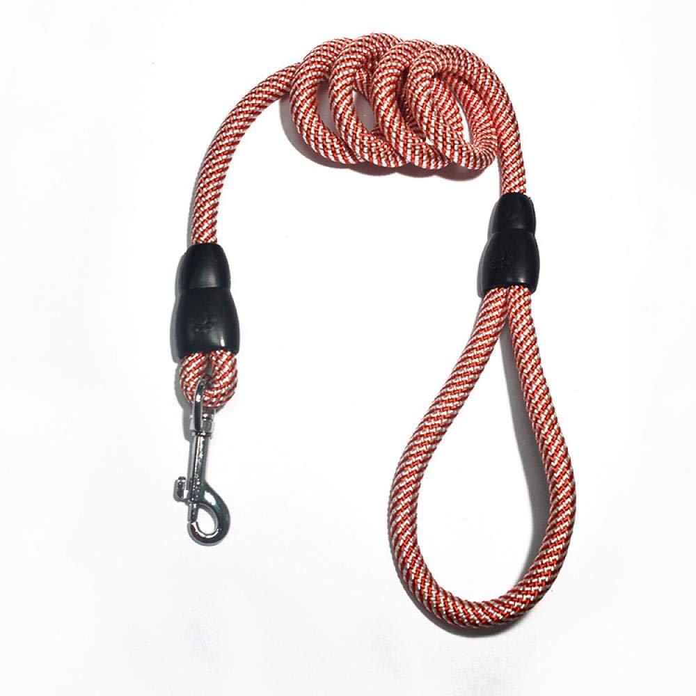 WINNER POP Dog Leash 120cm Nylon Strong Durable Rope Leash for Large Medium and Small Dogs Heavy Duty Running Training, Orange