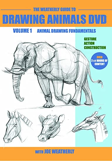 Amazon The Weatherly Guide To Drawing Animals DVD Volume One Joe Movies TV