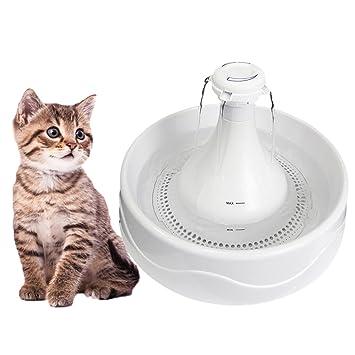 shanzhizui Dispensador de agua para mascotas Dispensador de agua Cat Circulación automática Gatos y perros Alimentador de agua: Amazon.es: Productos para ...