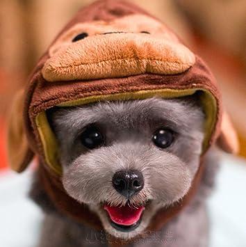 ペット サル ペットのニオイの悩みにおススメのキエルキンです。