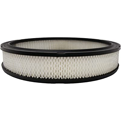 Luber-finer AF74A Heavy Duty Air Filter: Automotive