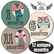 Owl Baby Monthly Stickers - Great Shower Gift or Scrapbook Photo Keepsake