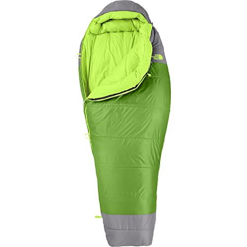 The North Face Snow Leopard - Saco, Color Verde/Gris, Talla Regular: Amazon.es: Zapatos y complementos