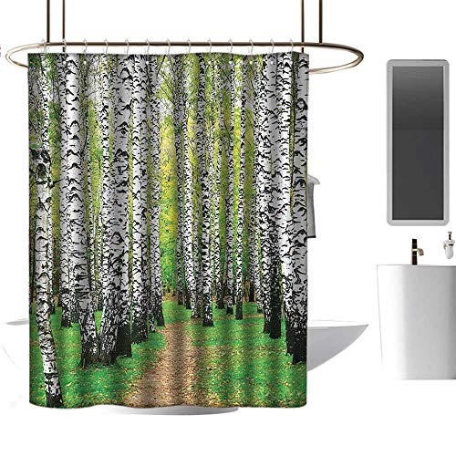 coolteey Shower Curtains for Bathroom sage Farm House Decor Collection,Pathway in Birch Grove Forest Early Fall Scene Print,Yellowgreen Olive Peru,W55 x L84,Shower Curtain for Shower stall
