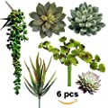 Supla Pack of 6 Assorted Artificial Succulents Picks Textured Faux Succulent Pick Succulent Stems Fake succulent bouquet String of Pearls Succulent Faux Succulent Floral Arrangement Accent