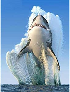 AIIHZ 5D DIY Diamond Painting Kit Cross Stitch Picture Full Round Drill Decor Rhinestones Embroidery Mosaic Needlework Sea Shark Jumping Animal landscape-40X50CM