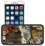 iphone 6 case salt life - Liili Apple iPhone 6 iPhone 6S Aluminum Backplate Bumper Snap iphone6/6s Case Saltwater fishing Marine life nature background 28454397
