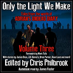 Only the Light We Make Audiobook