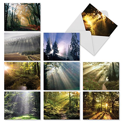 Beautiful Assorted Landscape Note Cards (Box of 10) All Occasion Blank Greeting Card w/Envelopes -