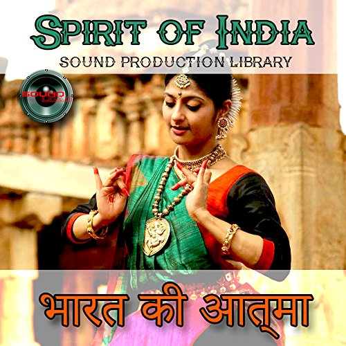 INDIA. SPIRIT of INDIA - Huge Multi-Layer WAV/Kontakt Production Library on 2DVD by SoundLoad (Image #9)
