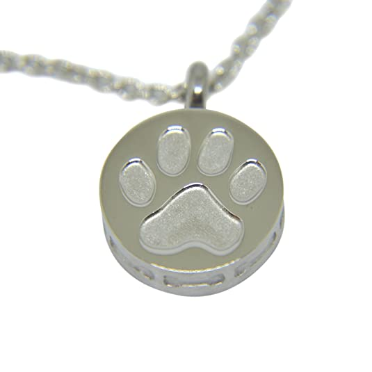 Amazon.com: Collar con Colgante Perro Paw – Plata Inoxidable ...