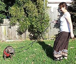 Dog Leash - Extra Heavy Duty - Thick 3mm Nylon - 6ft Long - Premium Quality - 1\