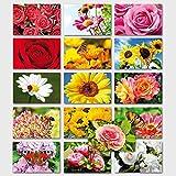 100 Grußkarten Blumen ohne Text 16 Motive Neutrale Glückwunschkarten Klappkarten mit Umschlägen 990-1826