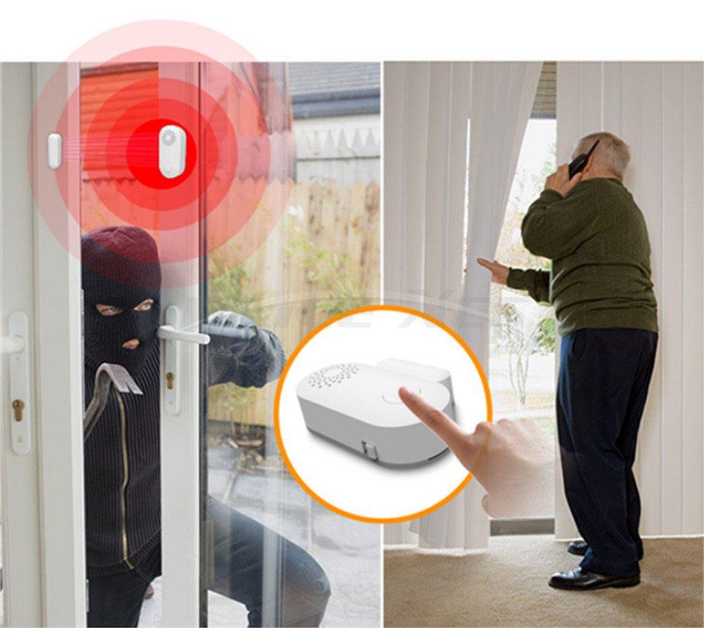 ... Kit - magnético Sensor - Tutor pantalla - ventana cristal vibración alarma antirrobo Seguridad para hogares, coches, caravanas, caravanas, cobertizos, ...