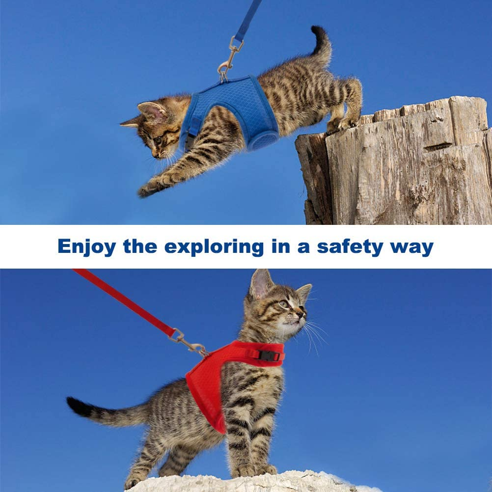2 Pack Escape Proof Cat Harness with Leash Set Breathable Mesh and Adjustable Walking Jacket Blue and Red
