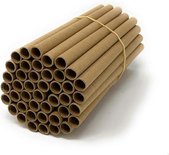 Wildlife World Solitarios Bee tubos de madera Paquete de 50