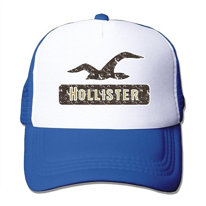 a75e3b7c9fd Hollister Retro Logo Trucker Hat Mesh Cap Adjustable Snapback Strap  RoyalBlue